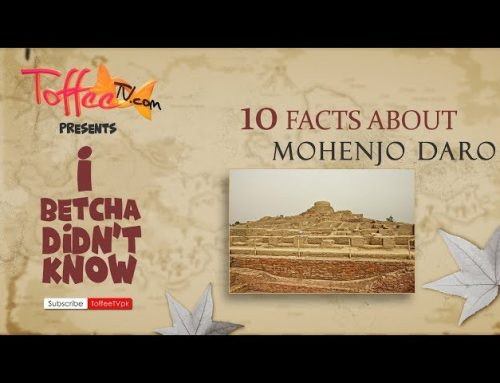 10 Fun Facts About MoenJoDaro, I Betcha You Didn't Know!
