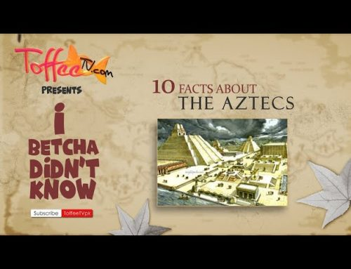 10 Fun Facts About Aztecs, I Betcha You Didn't Know!
